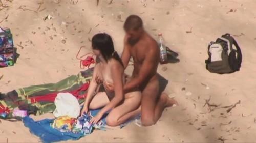 levrette à la plage